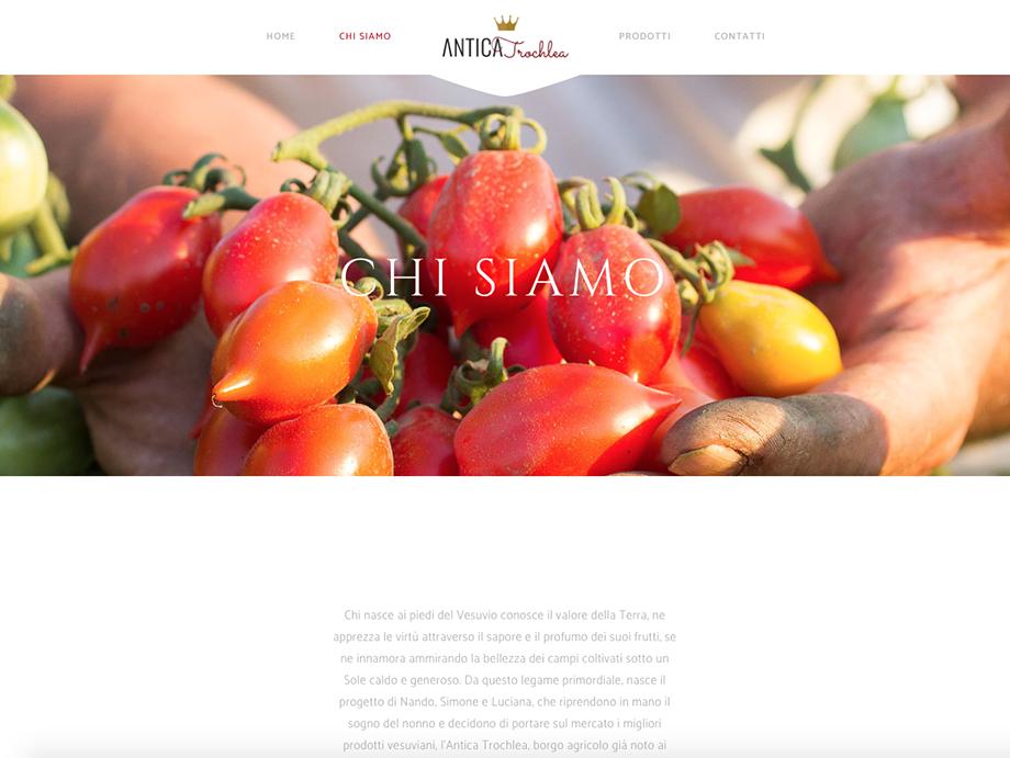 agenzia-comunicazione-napoli-roberto-guariglia-advertising-portfolio-work-food-azienda-agricola-antica-trochlea-pomodorino-del-piennolo-del-vesuvio-dop-sito-web-3.png